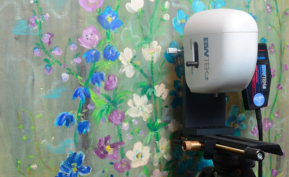 Spettroscopia Raman in situ